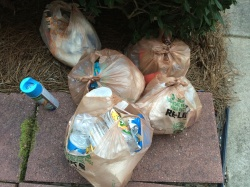 I've been derelict about recycling this week's trove of trash. Time to get down and dirty.