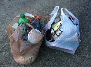 Here's this morning's grotesque haul - about 10 lbs. of someone else's junk.
